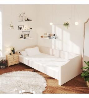 Pure2Improve Pizarra de entrenador fútbol 2 caras 35x22 cm P2I100680
